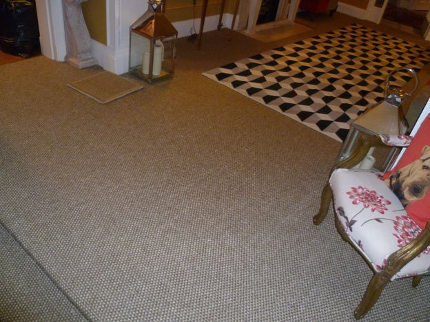 Crucial Trading Sisal Carpet Floor - Hall